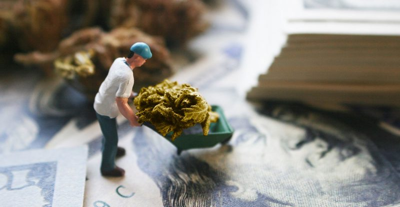 Cannabis-Business-Practices